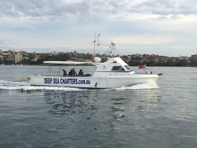 Deep Sea Fishing Charter Boat Reef Runner