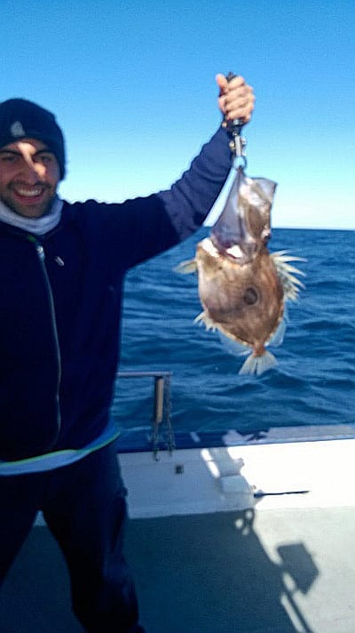 Fantastic fishing conditions